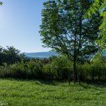 Taizé-Am-Silence-Areal_Morgen_1