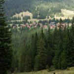 Abstieg zurück zum Alpengasthof Gösler Hütte (© Herr Mag. Bernhard Wagner).