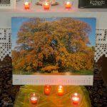 Zauber und Mythos ... Kalenderblatt mit Aufnahme eines Laubbaumes in typischer Herbstfärbung (© Herr Mag. Bernhard Wagner).